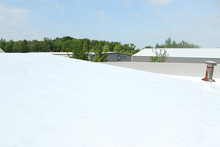 DPI DL roof