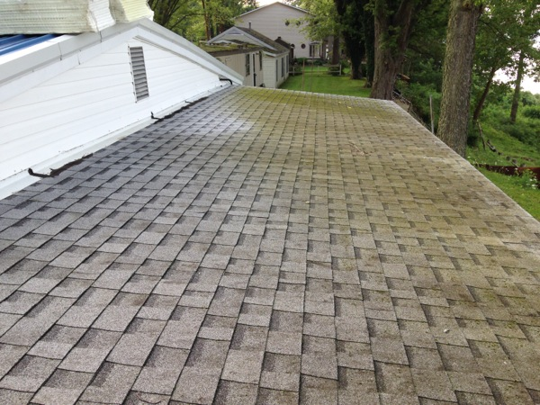Does Moss Or Algae Love Your Shingle Roof