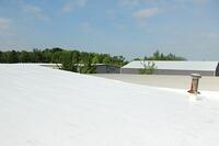spring clean roof