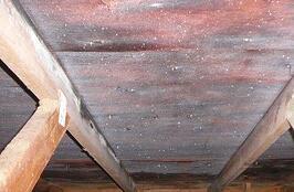 roof/attic_condensation