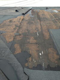 flat_roof_wind_damage