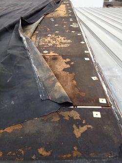 DPI_rubber_roof_wind_damage