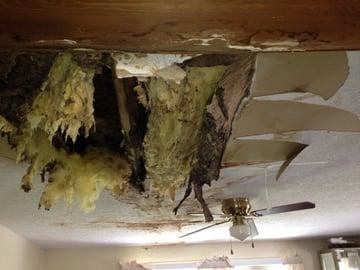 Ventilation Damage.jpg