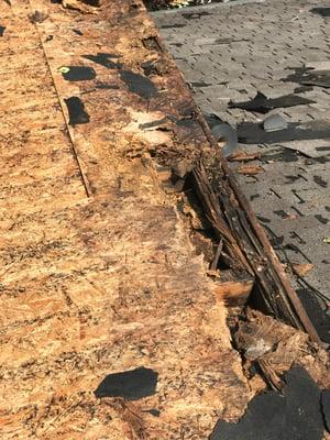 Shingle Roof Repair Wood Rot-Madison.jpg