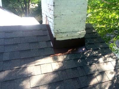 Shingle_Roof_Repair-Ivy_Vine.jpg