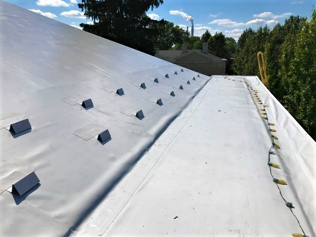 Metal Roof Repair Retrofit Snow Guard- BadApple .jpg